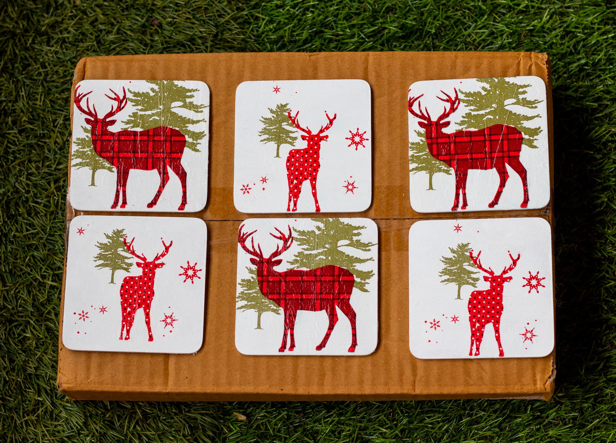 Christmas themed Coaster set.